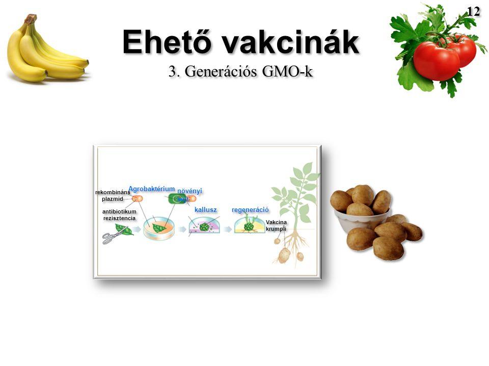 Ehető vakcinák 3. Generációs GMO-k Ehető vakcinák 3.