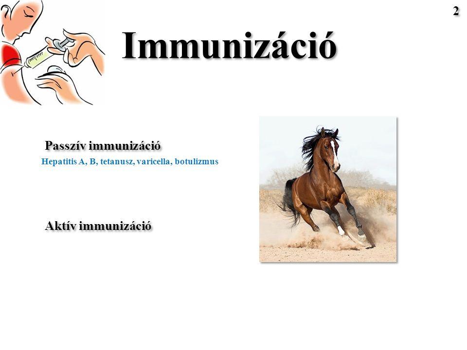 Immunizáció Passzív immunizáció Aktív immunizáció Hepatitis A, B, tetanusz, varicella, botulizmus 2 2