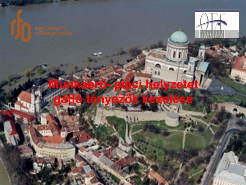 A Roma Foglalkoztató és Oktatásszervező Kht Társaságunk 2003.