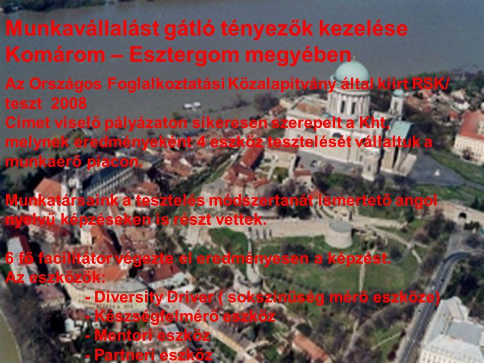 Munkavállalást gátló tényezők kezelése Komárom – Esztergom megyében Az Országos Foglalkoztatási Közalapítvány által kiírt RSK/ teszt 2008 Címet viselő