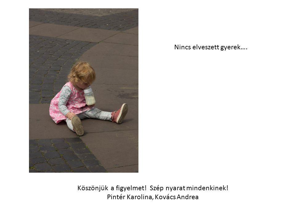 Köszönjük a figyelmet! Szép nyarat mindenkinek! Pintér Karolina, Kovács Andrea Nincs elveszett gyerek….