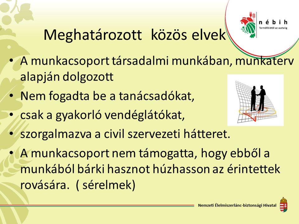 Meghatározott közös elvek A munkacsoport társadalmi munkában, munkaterv alapján dolgozott Nem fogadta be a tanácsadókat, csak a gyakorló vendéglátókat, szorgalmazva a civil szervezeti hátteret.
