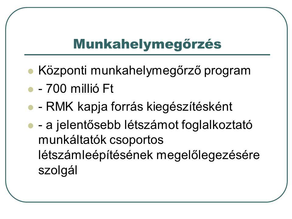 Munkahelymegőrzés Központi munkahelymegőrző program - 700 millió Ft - RMK kapja forrás kiegészítésként - a jelentősebb létszámot foglalkoztató munkált