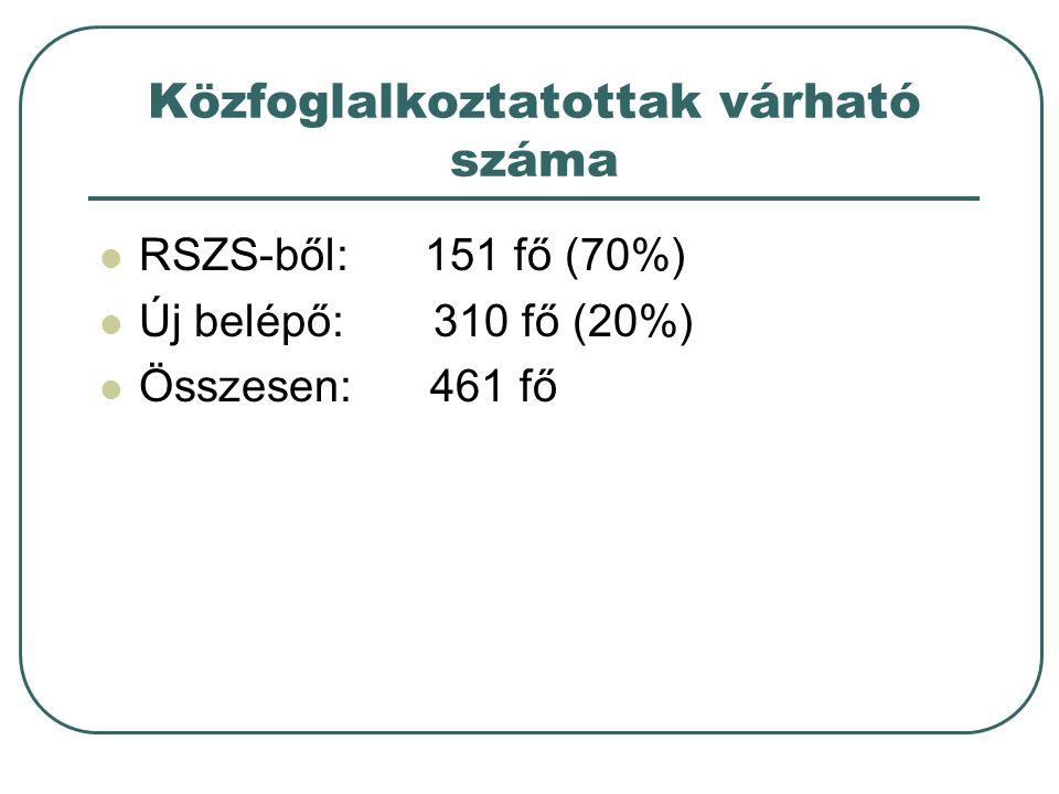 Közfoglalkoztatottak várható száma RSZS-ből: 151 fő (70%) Új belépő: 310 fő (20%) Összesen: 461 fő