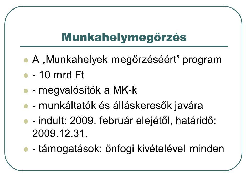 """Munkahelymegőrzés A """"Munkahelyek megőrzéséért"""" program - 10 mrd Ft - megvalósítók a MK-k - munkáltatók és álláskeresők javára - indult: 2009. február"""