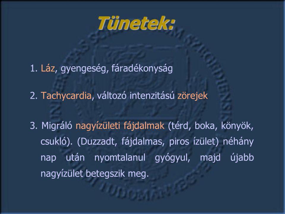 1. Láz, gyengeség, fáradékonyság 2. Tachycardia, változó intenzitású zörejek 3.