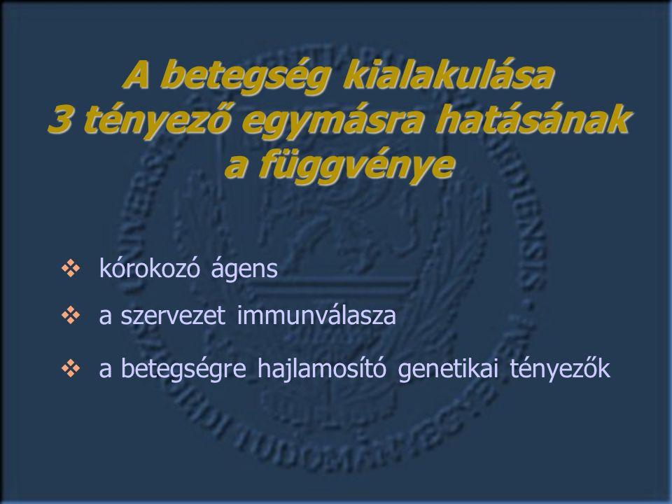 Terápiás stratégia Pozitív HC Negatív HC célzott empirikus Műbillentyű Natív billentyű korai késői Infekciós endocarditis