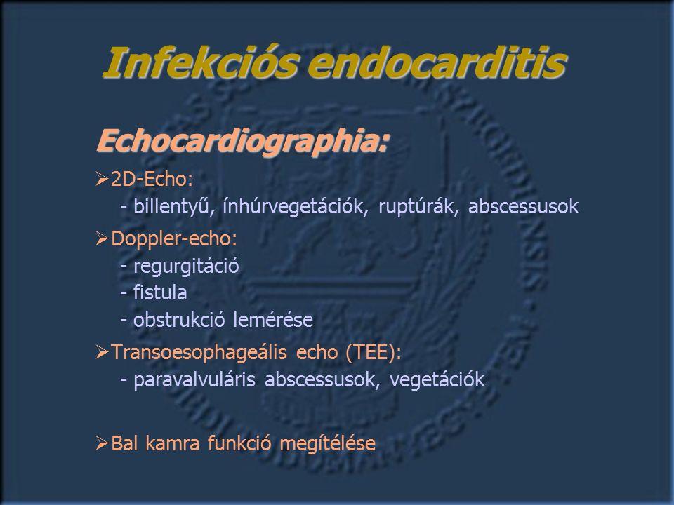 Echocardiographia:  2D-Echo: - billentyű, ínhúrvegetációk, ruptúrák, abscessusok  Doppler-echo: - regurgitáció - fistula - obstrukció lemérése  Transoesophageális echo (TEE): - paravalvuláris abscessusok, vegetációk  Bal kamra funkció megítélése Infekciós endocarditis