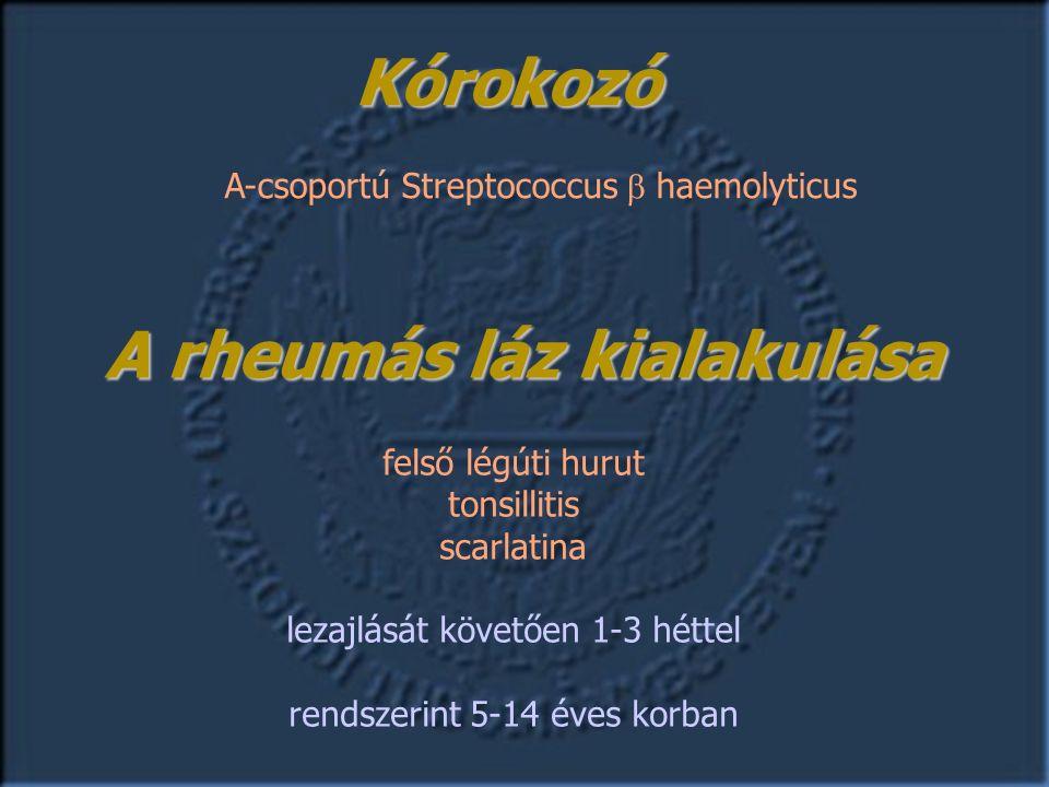 Kórokozó A-csoportú Streptococcus  haemolyticus felső légúti hurut tonsillitis scarlatina lezajlását követően 1-3 héttel rendszerint 5-14 éves korban A rheumás láz kialakulása