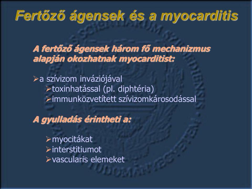 Fertőző ágensek és a myocarditis A fertőző ágensek három fő mechanizmus alapján okozhatnak myocarditist:  a szívizom inváziójával  toxinhatással (pl.