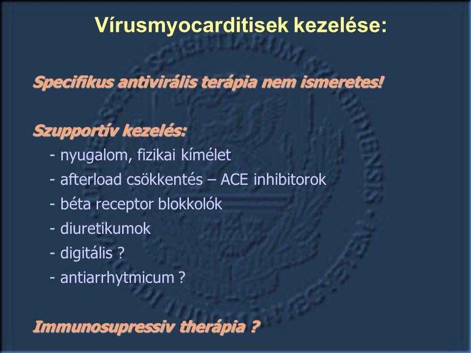Specifikus antivirális terápia nem ismeretes.