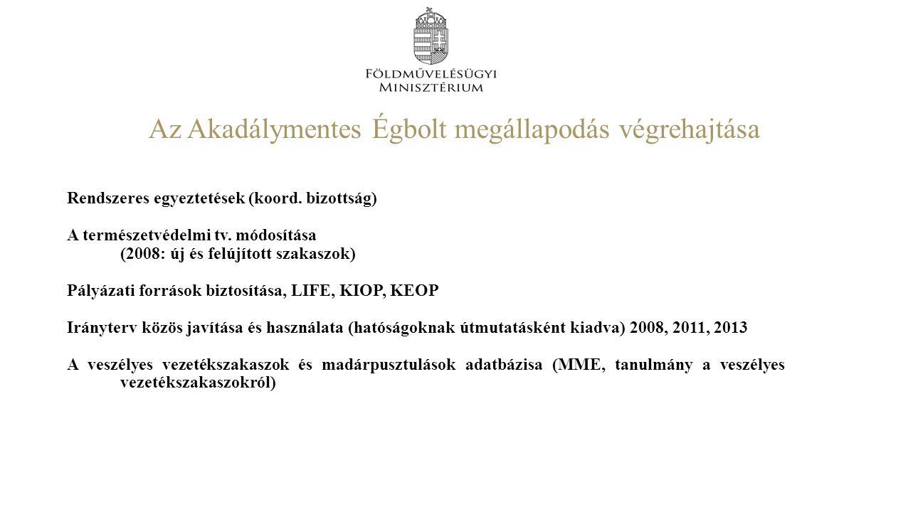 Az Akadálymentes Égbolt megállapodás végrehajtása Rendszeres egyeztetések (koord.