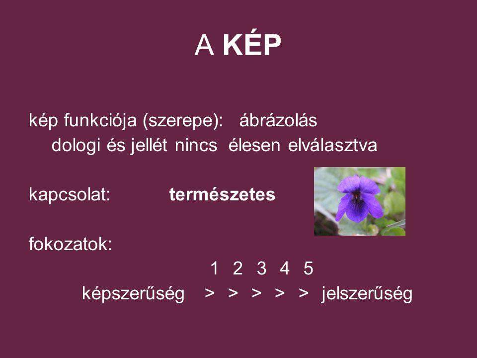 A KÉP kép funkciója (szerepe): ábrázolás dologi és jellét nincs élesen elválasztva kapcsolat: természetes fokozatok: 12345 képszerűség >>>>> jelszerűség