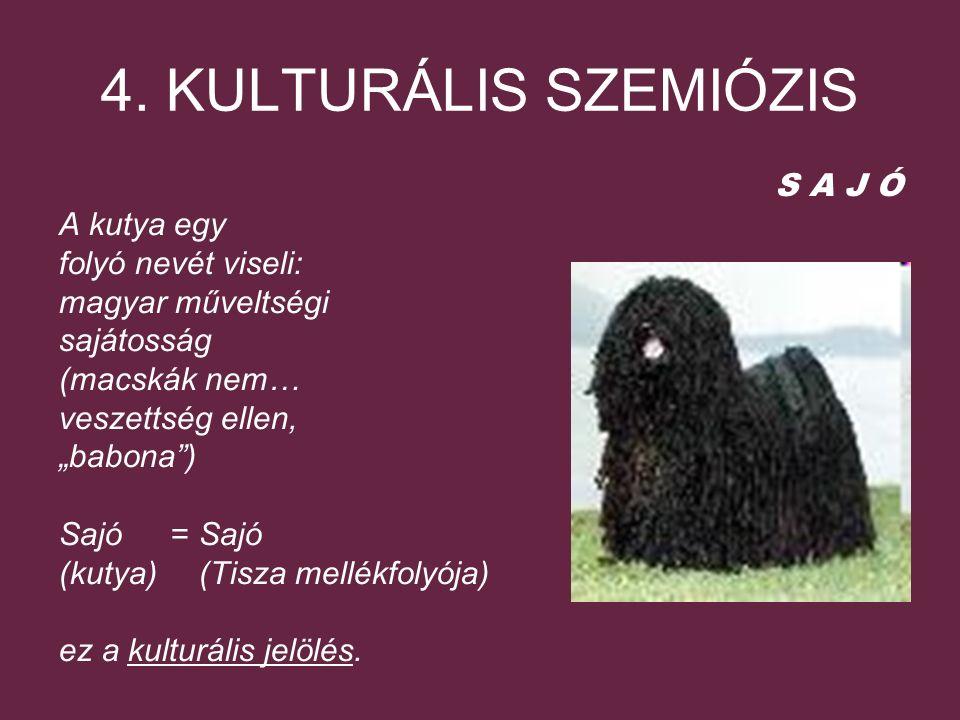 """4. KULTURÁLIS SZEMIÓZIS S A J Ó A kutya egy folyó nevét viseli: magyar műveltségi sajátosság (macskák nem… veszettség ellen, """"babona"""") Sajó = Sajó (ku"""