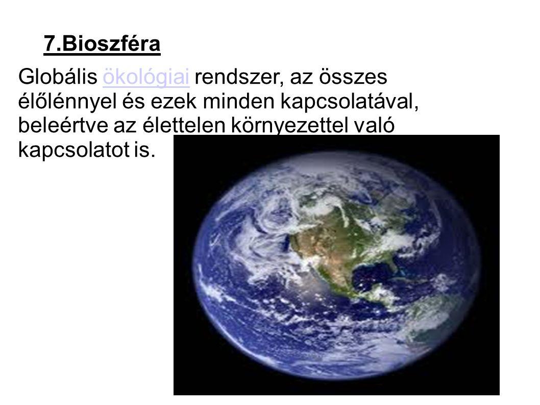 7.Bioszféra Globális ökológiai rendszer, az összes élőlénnyel és ezek minden kapcsolatával, beleértve az élettelen környezettel való kapcsolatot is.ökológiai