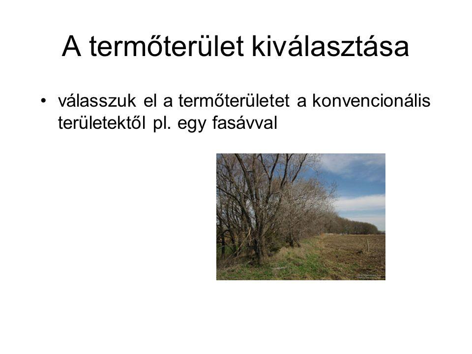 a termőterületnek megfelelő távolságra (400-500 m) kell lennie légszennyezést okozó forrásoktól, pl.