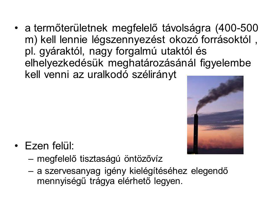 Talajvizsgálat vizsgált tényezők: –nehézfémek: Pb, As, Cd, Hg –káros anyagok maradványai