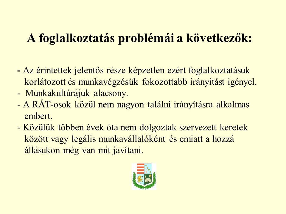 A foglalkoztatás problémái a következők: - Az érintettek jelentős része képzetlen ezért foglalkoztatásuk korlátozott és munkavégzésük fokozottabb irányítást igényel.