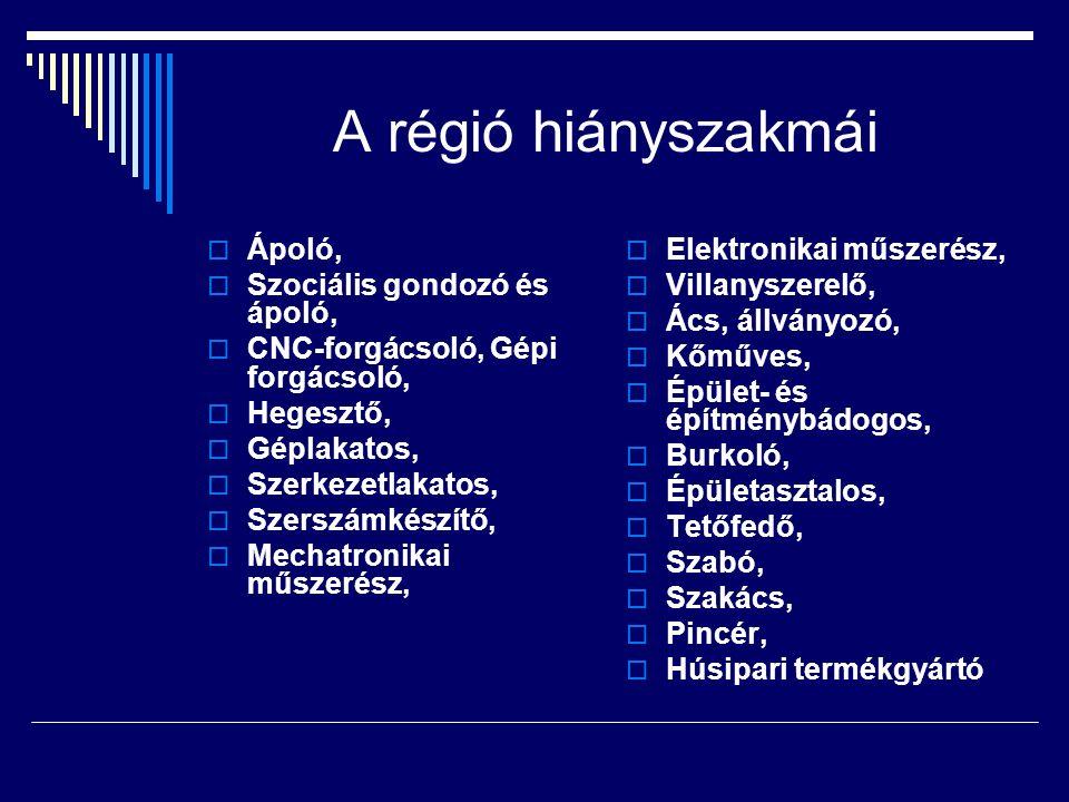 A régió hiányszakmái  Ápoló,  Szociális gondozó és ápoló,  CNC-forgácsoló, Gépi forgácsoló,  Hegesztő,  Géplakatos,  Szerkezetlakatos,  Szerszá
