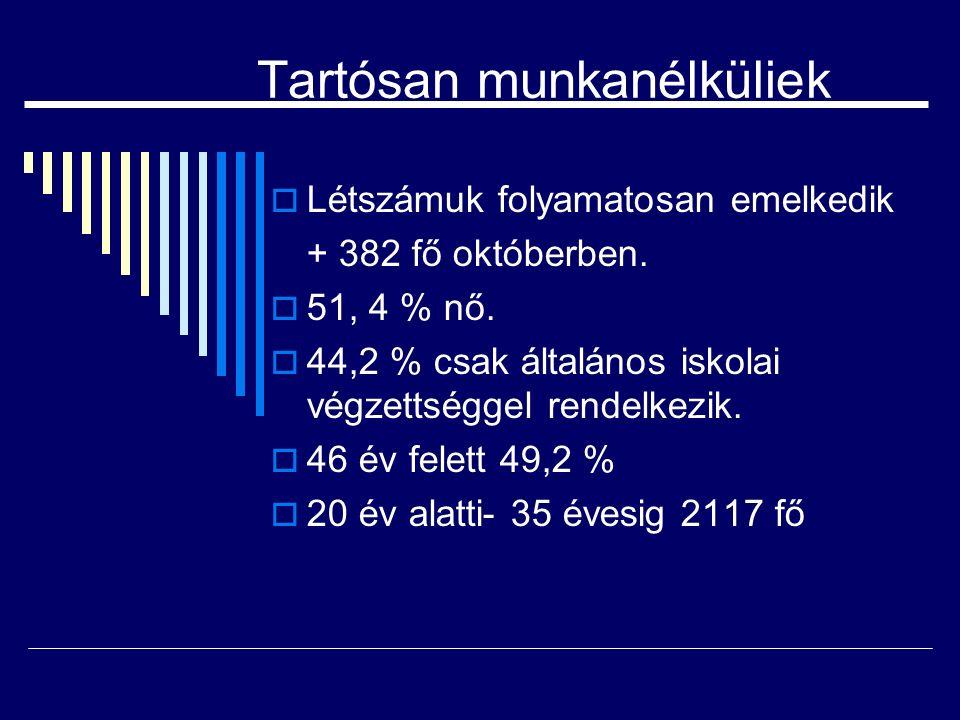 Tartósan munkanélküliek  Létszámuk folyamatosan emelkedik + 382 fő októberben.