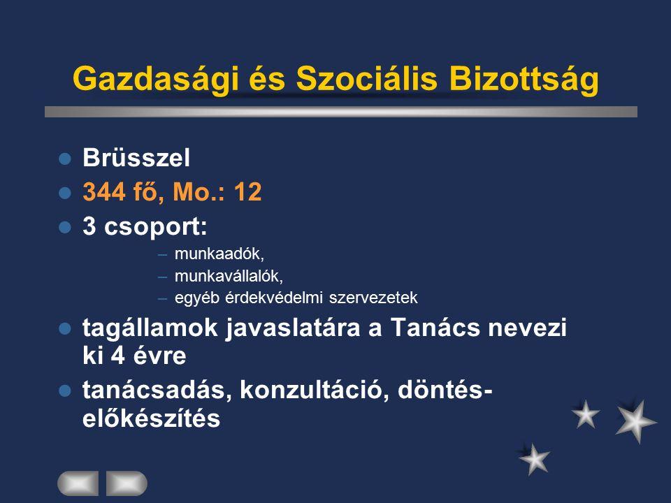 Régiók Bizottsága Brüsszel 344 fő, Mo.: 12 helyi és regionális önkormányzatok képviselete tagállamok nevezik ki 4 évre tanácsadás, konzultáció, döntés- előkészítés
