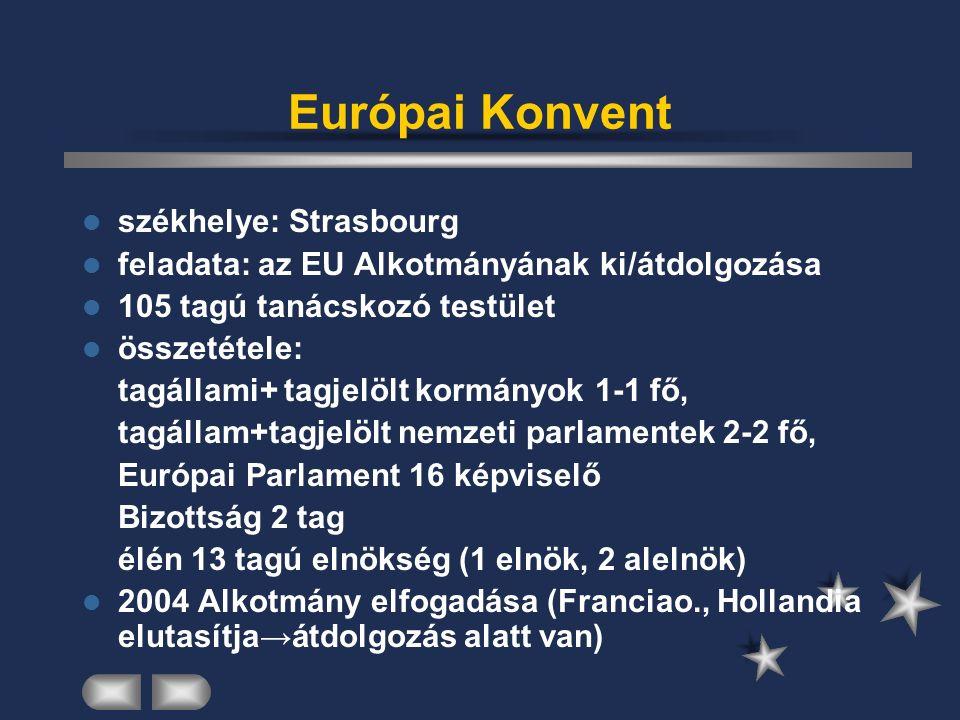 Europol székhelye: Hága nemzetek feletti kormányközi testület Europol – 1995-ben döntöttek a felállításáról, majd 1999-ben kezdte meg működését döntéshozó szerve: Ügyvezető Igazgatóság - Belügyminiszterek feladata: tagországok rendőrségei közötti információcsere, azok elemzése, az együttműködés keretében a szervezett bűnözés elleni fellépés és megelőzés