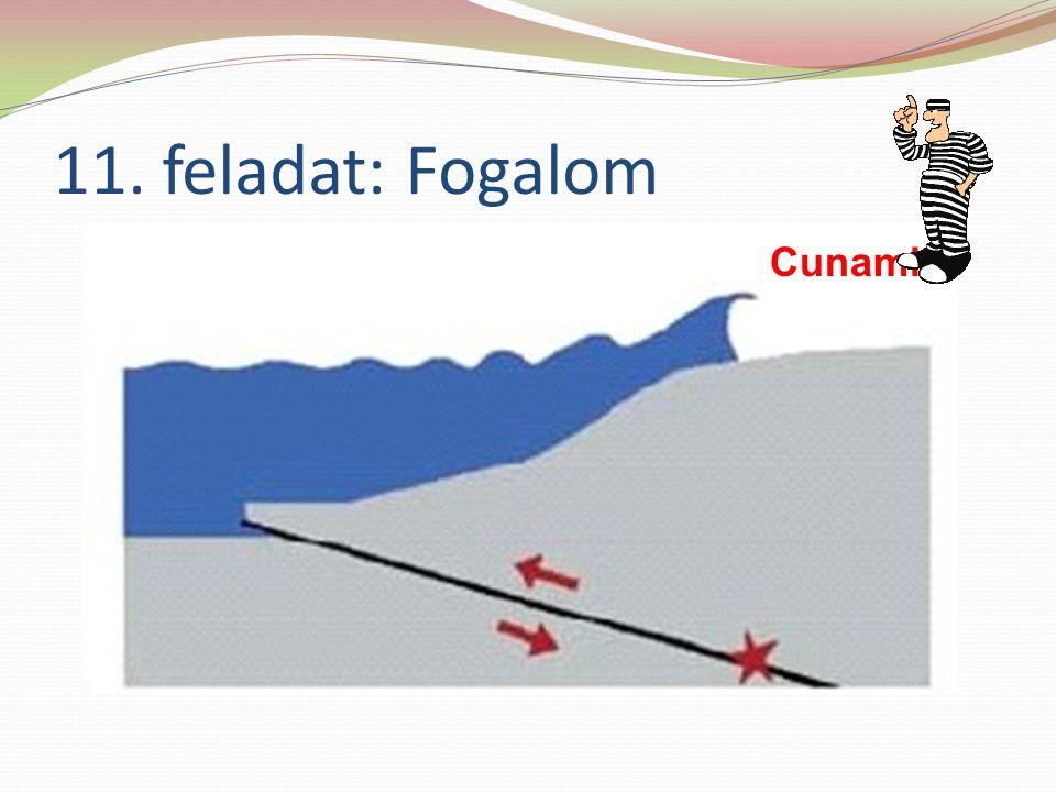 11. feladat: Fogalom Cunami