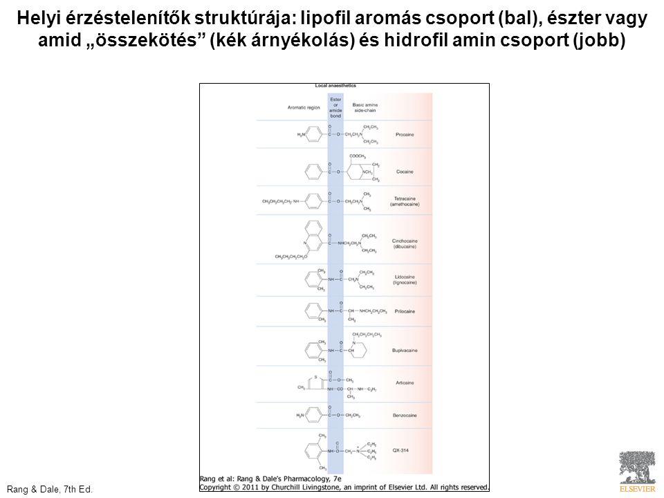 """Helyi érzéstelenítők struktúrája: lipofil aromás csoport (bal), észter vagy amid """"összekötés (kék árnyékolás) és hidrofil amin csoport (jobb) Rang & Dale, 7th Ed."""