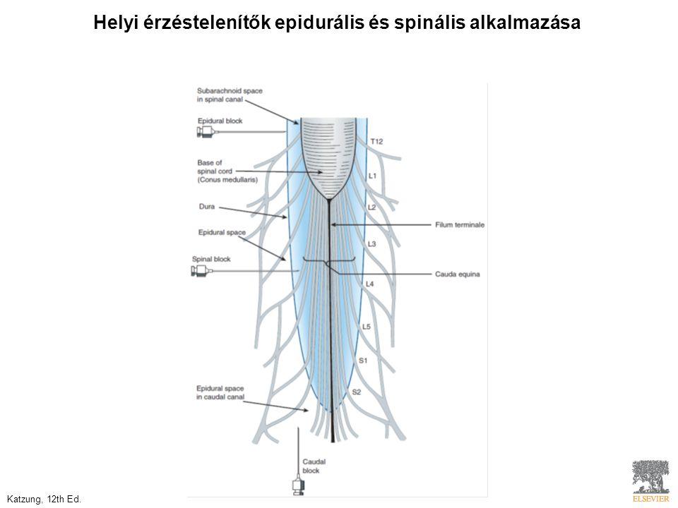 Helyi érzéstelenítők epidurális és spinális alkalmazása Katzung, 12th Ed.