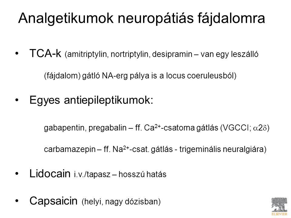 Analgetikumok neuropátiás fájdalomra TCA-k (amitriptylin, nortriptylin, desipramin – van egy leszálló (fájdalom) gátló NA-erg pálya is a locus coeruleusból) Egyes antiepileptikumok: gabapentin, pregabalin – ff.