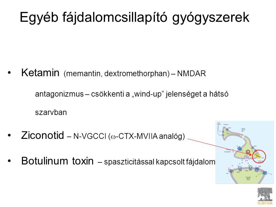 """Egyéb fájdalomcsillapító gyógyszerek Ketamin (memantin, dextromethorphan) – NMDAR antagonizmus – csökkenti a """"wind-up jelenséget a hátsó szarvban Ziconotid – N-VGCCI (  -CTX-MVIIA analóg) Botulinum toxin – spaszticitással kapcsolt fájdalom"""