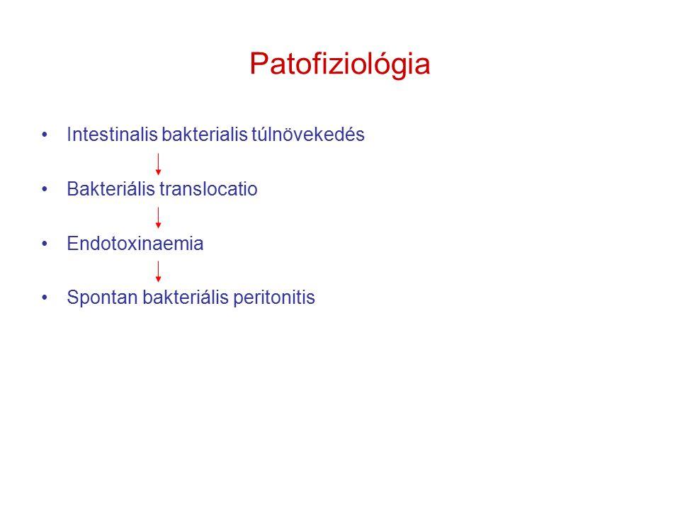 SBP klinikuma Láz (80%) Ascites Hasi fájdalom, acut, peritonealis izgalmi jel + fizikális vizsgálatkor A tünetek hiánya nem zárja ki a klinikai diagnózis gyanúját Láz + ascites = ascites punkció MB adatok, PMN  250 sejt/mm 3 (anaerob ritkán +) –10 ml – HK táptalajba (40% poz) –HK D/D – primer intraabdominalis fertőzés (CT!); mellkas rtg + natív hasi felvétel – perforatio kizárása !!