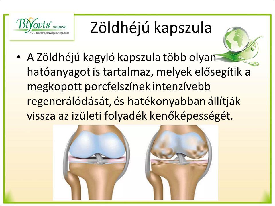 Zöldhéjú kapszula A Zöldhéjú kagyló kapszula több olyan hatóanyagot is tartalmaz, melyek elősegítik a megkopott porcfelszínek intenzívebb regenerálódását, és hatékonyabban állítják vissza az izületi folyadék kenőképességét.