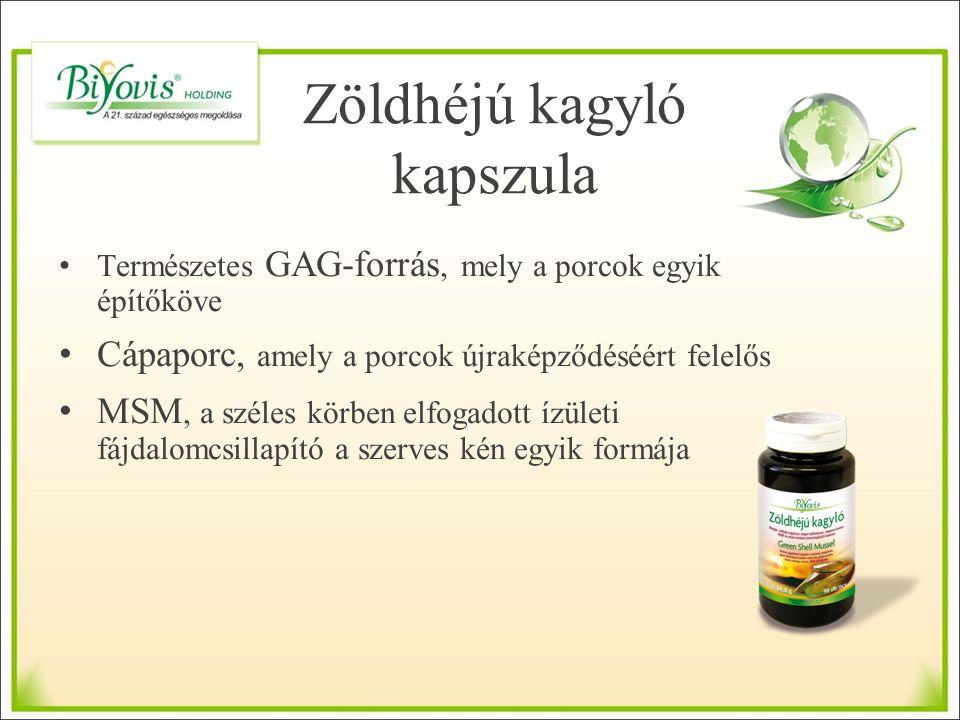 Zöldhéjú kagyló kapszula Természetes GAG-forrás, mely a porcok egyik építőköve Cápaporc, amely a porcok újraképződéséért felelős MSM, a széles körben elfogadott ízületi fájdalomcsillapító a szerves kén egyik formája