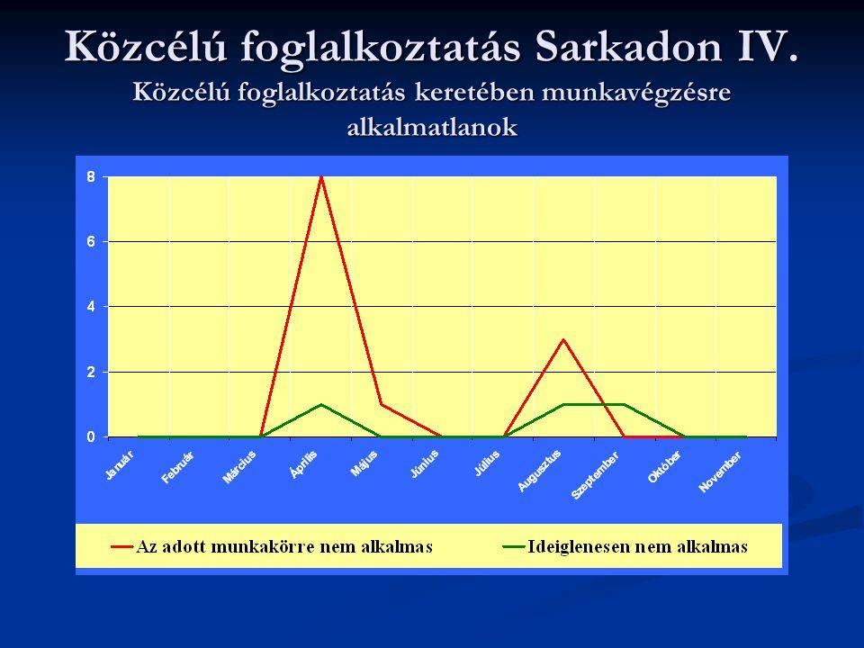 Közcélú foglalkoztatás Sarkadon IV. Közcélú foglalkoztatás keretében munkavégzésre alkalmatlanok