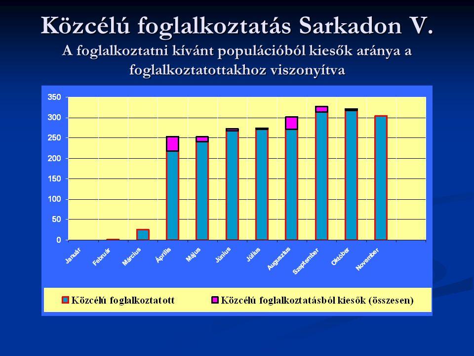 Közcélú foglalkoztatás Sarkadon V.