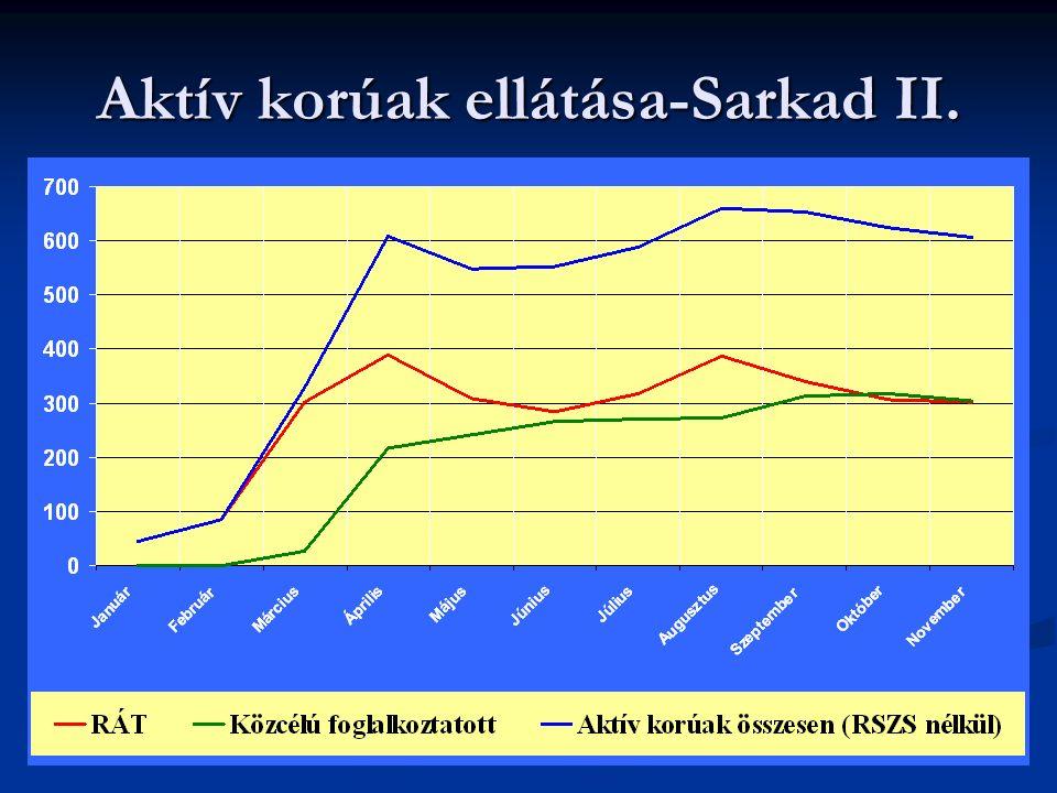 Aktív korúak ellátása-Sarkad II.