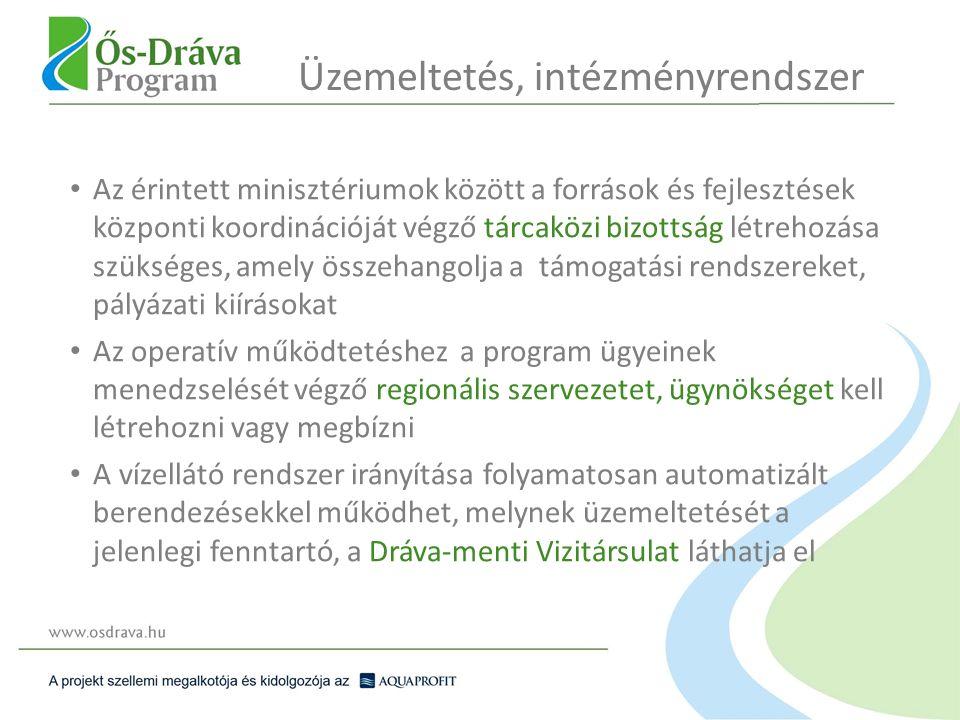 Az érintett minisztériumok között a források és fejlesztések központi koordinációját végző tárcaközi bizottság létrehozása szükséges, amely összehangolja a támogatási rendszereket, pályázati kiírásokat Az operatív működtetéshez a program ügyeinek menedzselését végző regionális szervezetet, ügynökséget kell létrehozni vagy megbízni A vízellátó rendszer irányítása folyamatosan automatizált berendezésekkel működhet, melynek üzemeltetését a jelenlegi fenntartó, a Dráva-menti Vizitársulat láthatja el Üzemeltetés, intézményrendszer