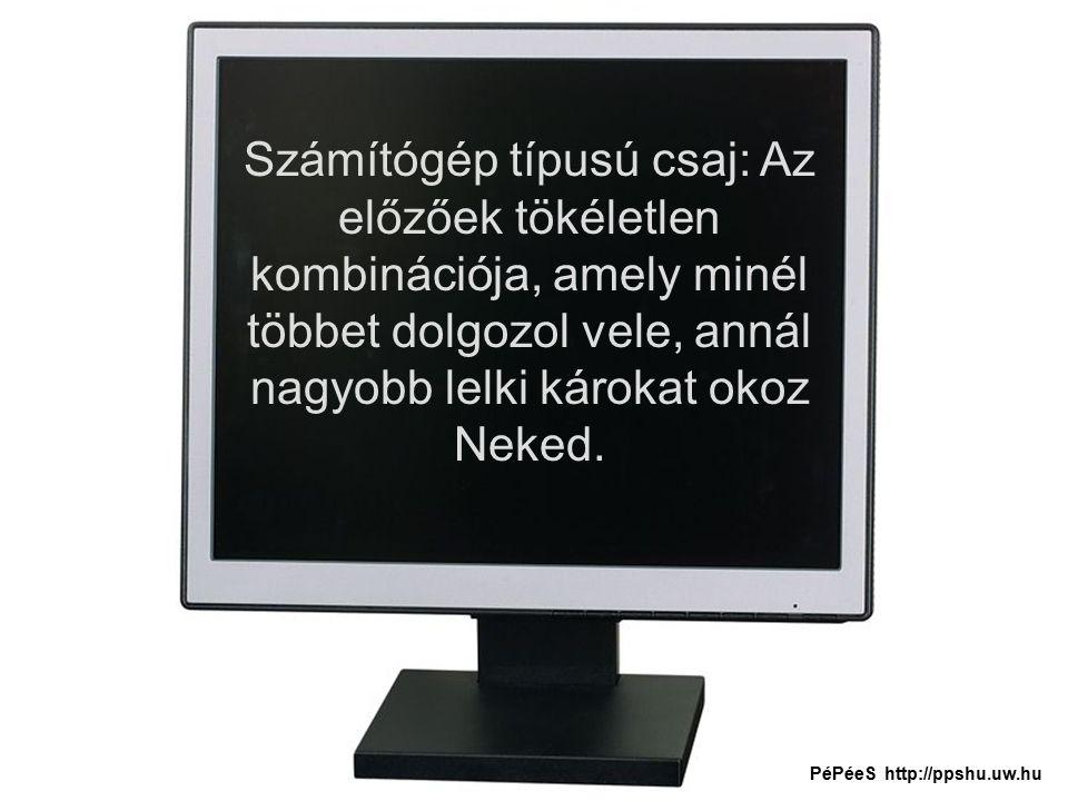Számítógép típusú csaj: Az előzőek tökéletlen kombinációja, amely minél többet dolgozol vele, annál nagyobb lelki károkat okoz Neked.