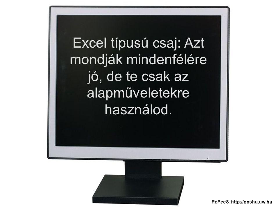 Excel típusú csaj: Azt mondják mindenfélére jó, de te csak az alapműveletekre használod.