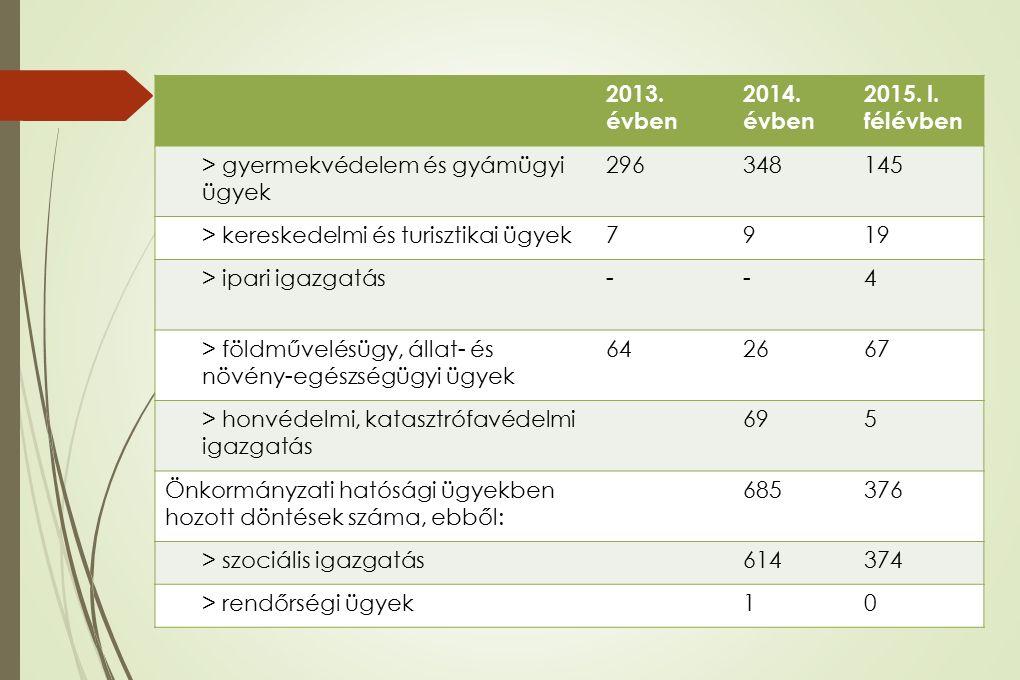 HATÓSÁGI STATISZTIKA ALSÓMOCSOLÁDI KIRENDELTSÉG 2013.