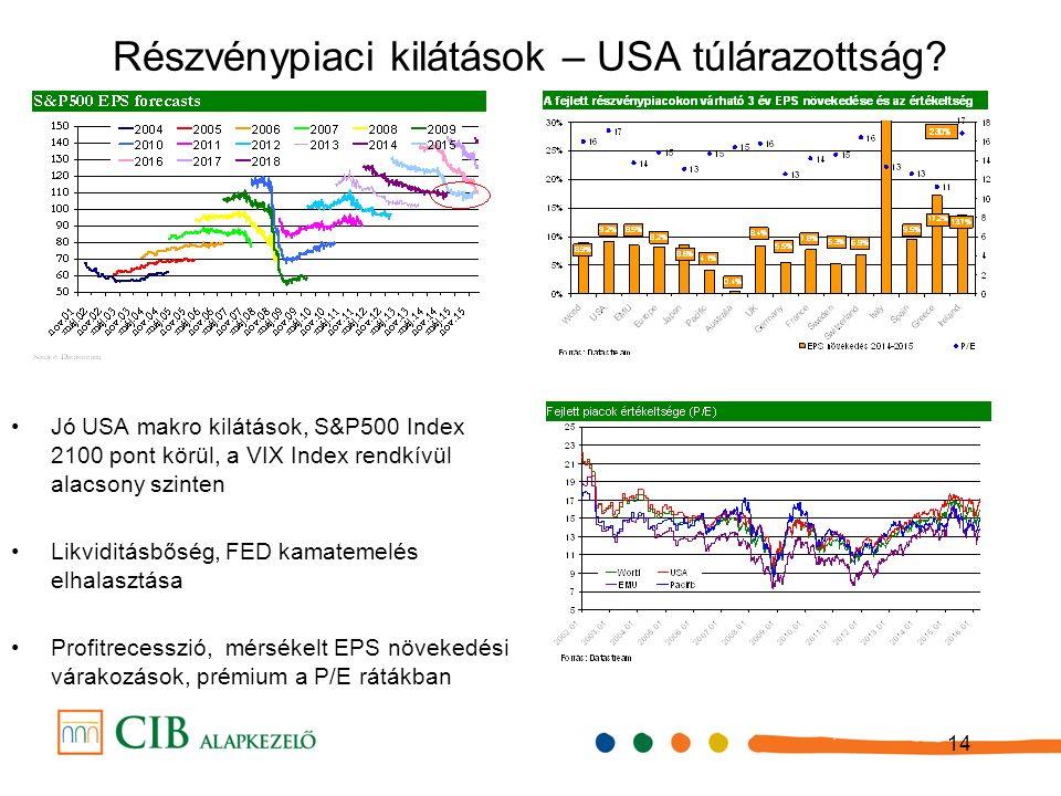 14 Részvénypiaci kilátások – USA túlárazottság.