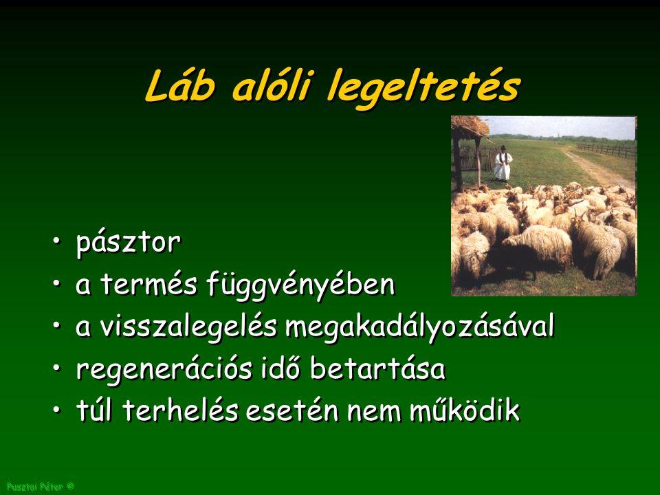 Pusztai Péter © Láb alóli legeltetés pásztor a termés függvényében a visszalegelés megakadályozásával regenerációs idő betartása túl terhelés esetén nem működik pásztor a termés függvényében a visszalegelés megakadályozásával regenerációs idő betartása túl terhelés esetén nem működik