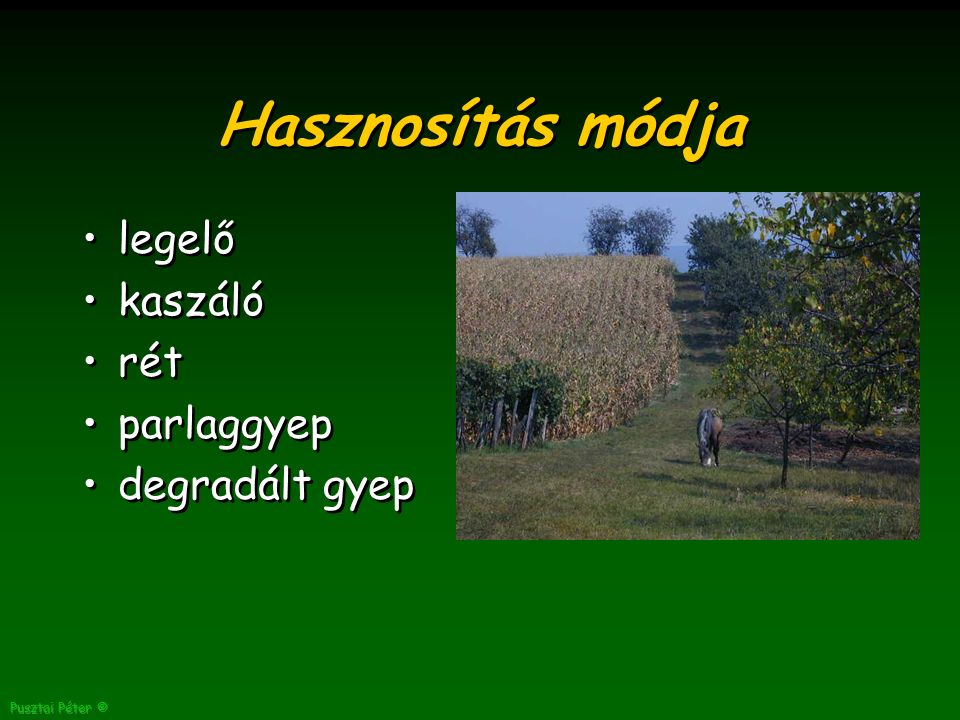 Pusztai Péter © Hasznosítás módja legelő kaszáló rét parlaggyep degradált gyep legelő kaszáló rét parlaggyep degradált gyep
