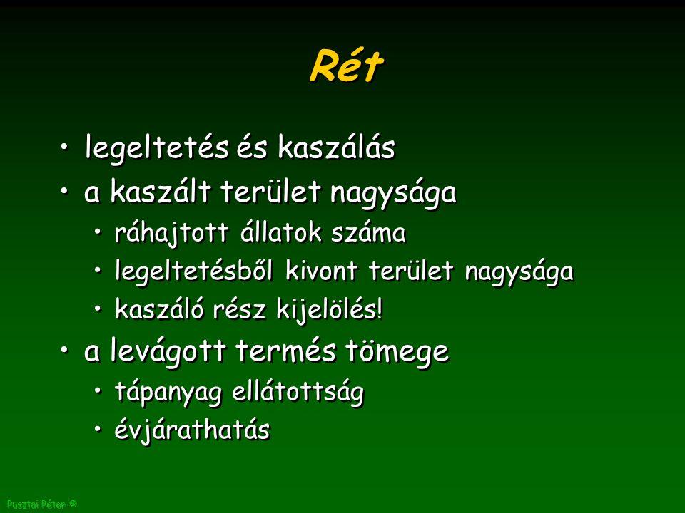 Pusztai Péter © Rét legeltetés és kaszálás a kaszált terület nagysága ráhajtott állatok száma legeltetésből kivont terület nagysága kaszáló rész kijelölés.