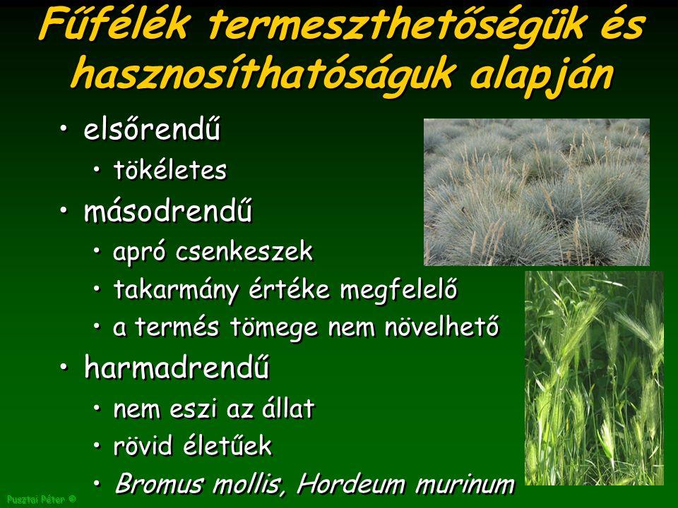 Pusztai Péter © Fűfélék termeszthetőségük és hasznosíthatóságuk alapján elsőrendű tökéletes másodrendű apró csenkeszek takarmány értéke megfelelő a termés tömege nem növelhető harmadrendű nem eszi az állat rövid életűek Bromus mollis, Hordeum murinum elsőrendű tökéletes másodrendű apró csenkeszek takarmány értéke megfelelő a termés tömege nem növelhető harmadrendű nem eszi az állat rövid életűek Bromus mollis, Hordeum murinum
