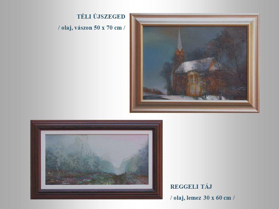 TÉLI DÉLUTÁN / olaj, lemez 33 x 37 cm / TÉLI UTAZÁS / olaj, lemez 46 x 54 cm /