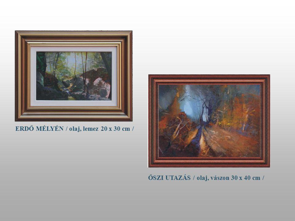 LOMBOK ALATT / olaj, lemez 30 x 40 cm/ PILISI PATAK / olaj, lemez 50 x 70 cm /