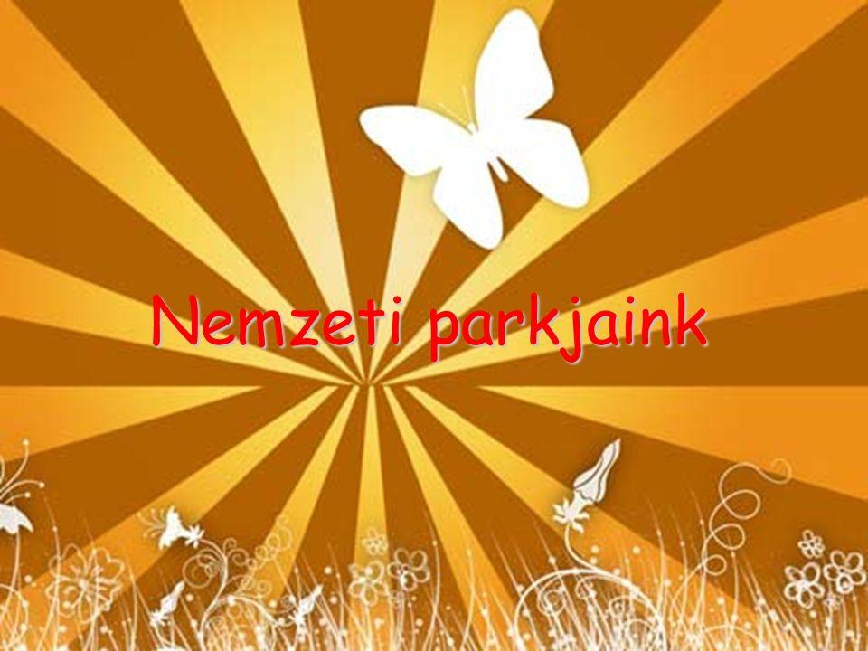 Duna-Dráva Nemzeti Park Ezt a np-t az 1990-es évek elején Jugoszláviával közösen tervezték, de a változások miatt 1996-ban Magyaro.