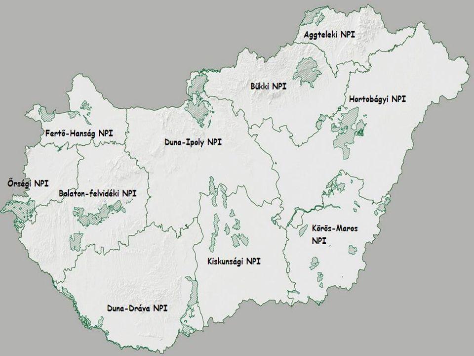 Aggteleki Nemzeti Park Fő tömegét tengeri üledékréteg építi felFő tömegét tengeri üledékréteg építi fel A védett terület nagysága: 19.981 hektár, ebből fokozottan védett 3.922 hektár.A védett terület nagysága: 19.981 hektár, ebből fokozottan védett 3.922 hektár.